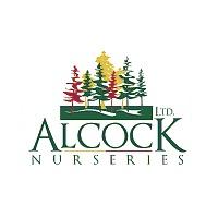 ALCOCK_NURSERIES