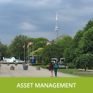 ASSET_MANAGEMENT_300X300
