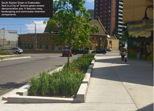 Complete Streets Include Green Infrastructure