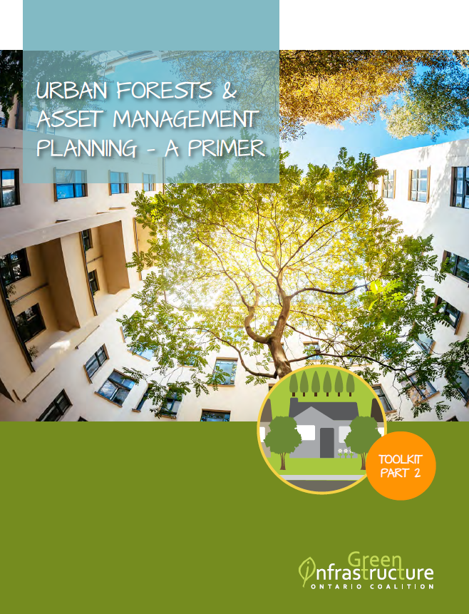 Urban Forest Asset Management