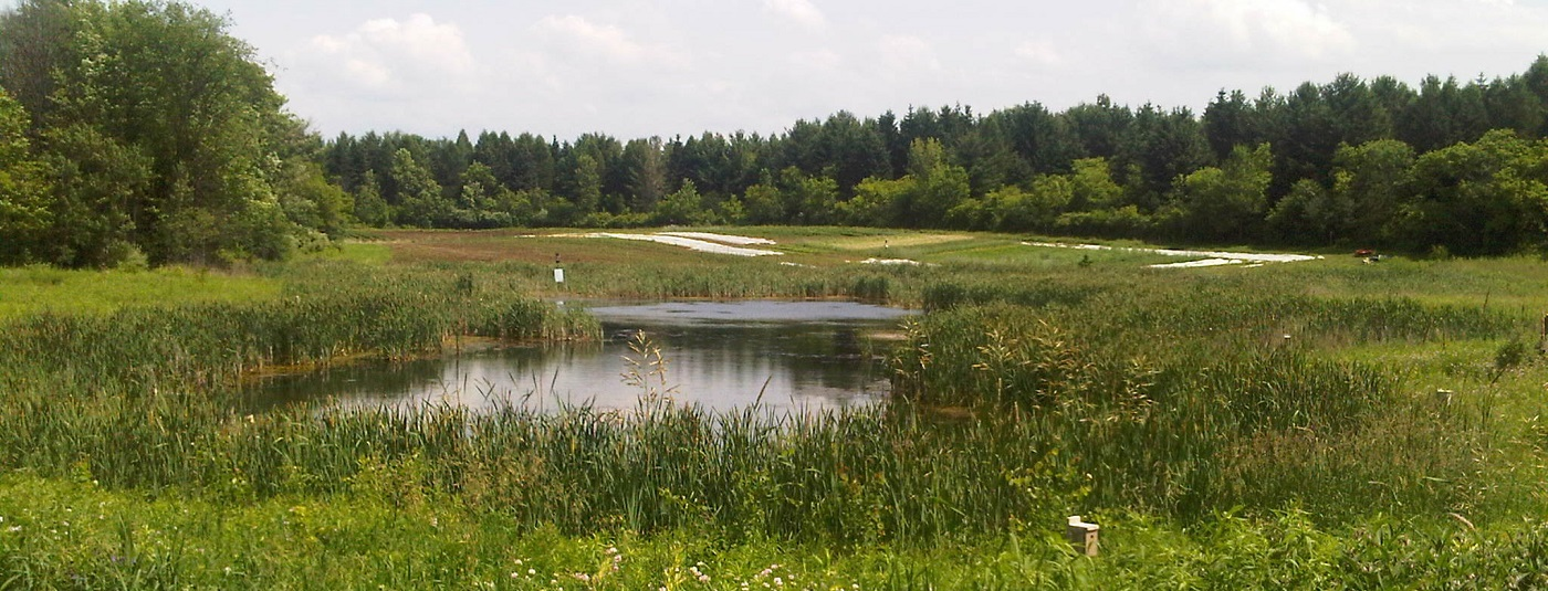 Recent Research: Best Practices and Resources on Climate Resilient Natural Infrastructure