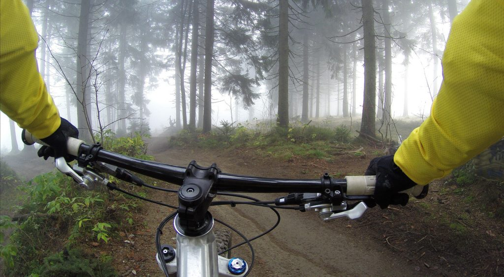 Cyclist rides along trail through a forest