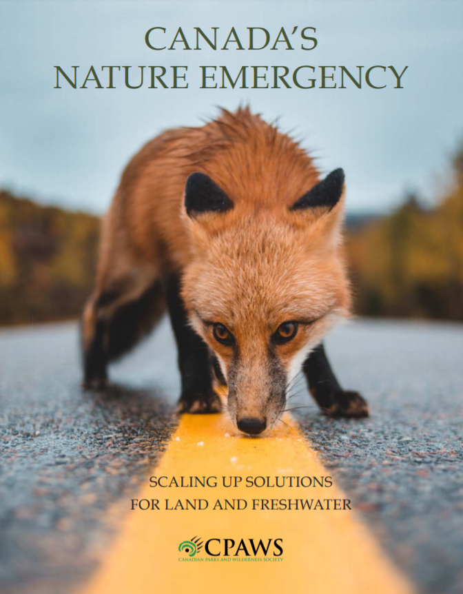 Cover of Canada's Nature Emergency Report