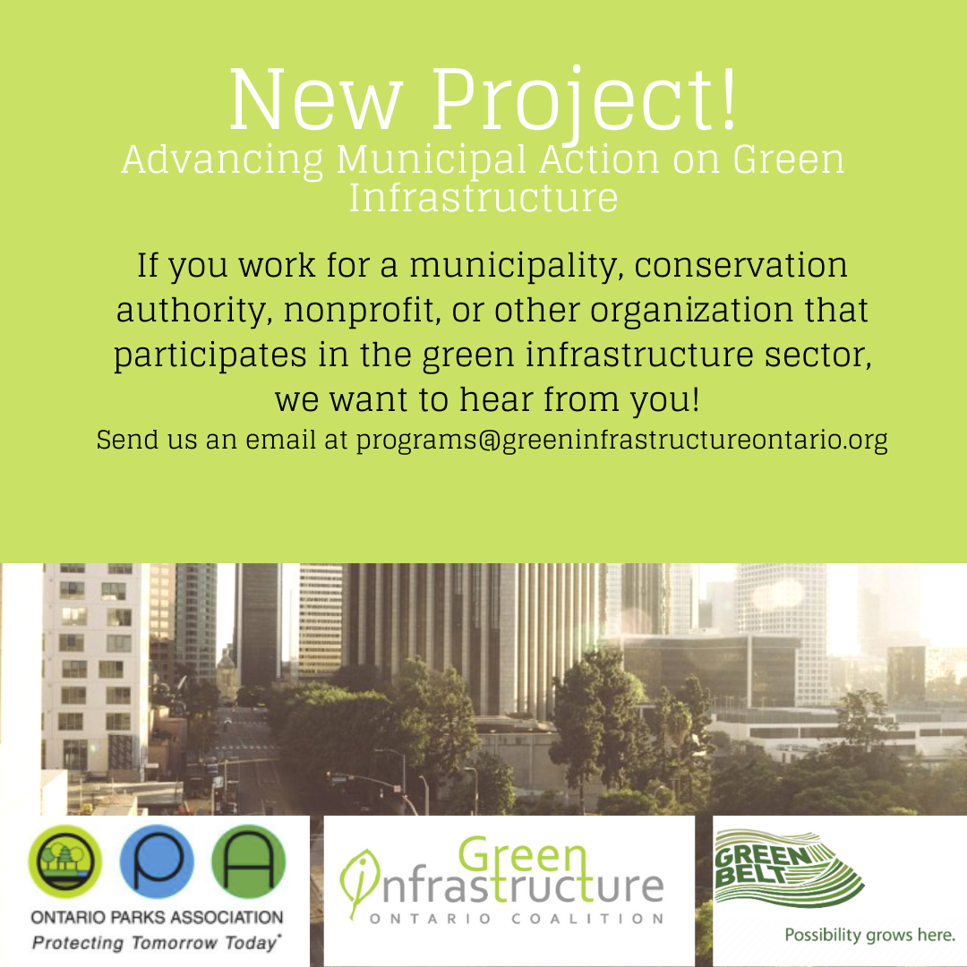 Advancing Municipal Action on Green Infrastructure
