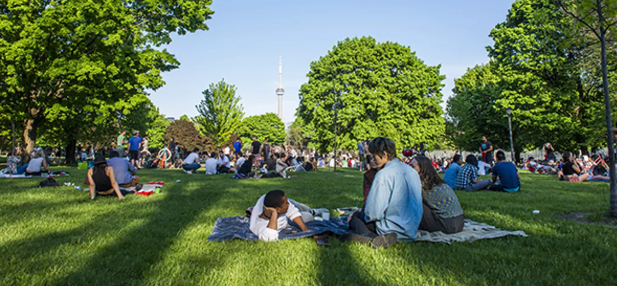 Toronto residents enjoy summer afternoon in park with CN Tower in background