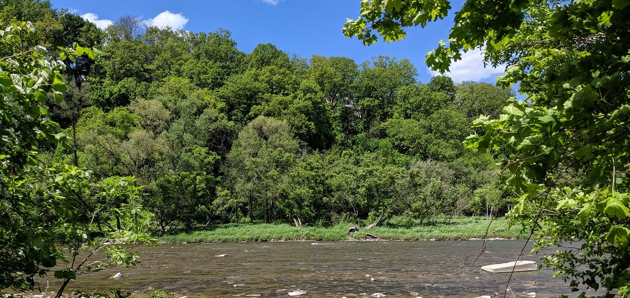 green space along Humber River in Toronto