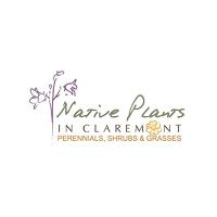 Native Plants in Claremont