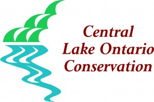 Central Lake Ontari CA solid logo colour 600dpi