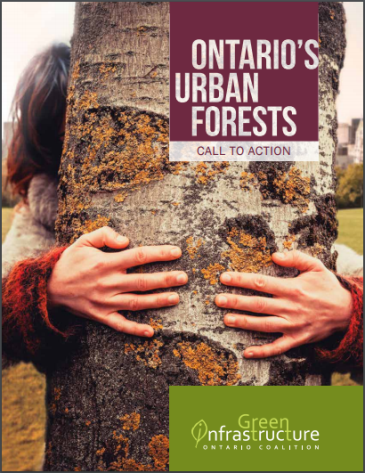 URBAN_FOREST_CALL_TO_ACTION_THUMBNAIL